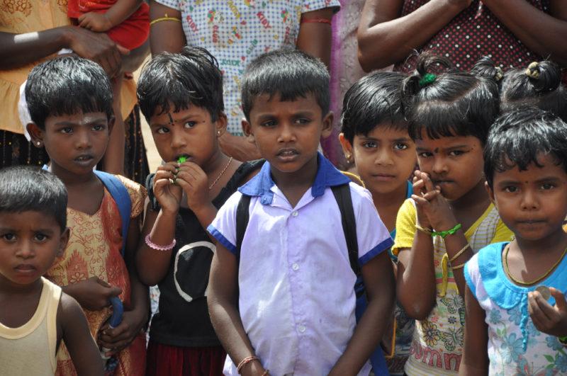 Sri Lanka - barn i flokk