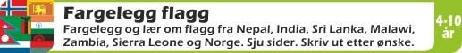 FARGELEGG-FLAGG