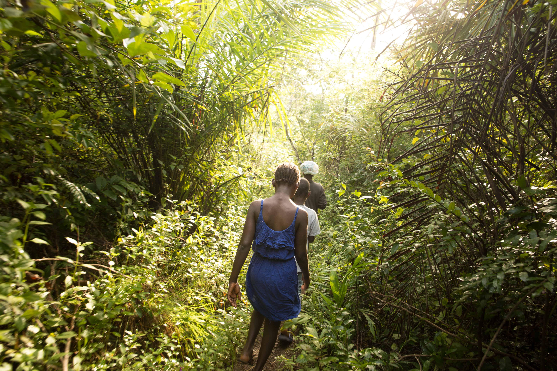 Det er en lang tur gjennom jungelen for å komme til risåkeren.